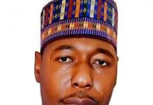 Zulum promises proactive security, social reform programmes