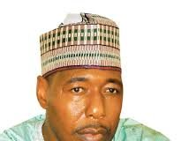 ANRP urges Borno governor-elect to run people-oriented administration